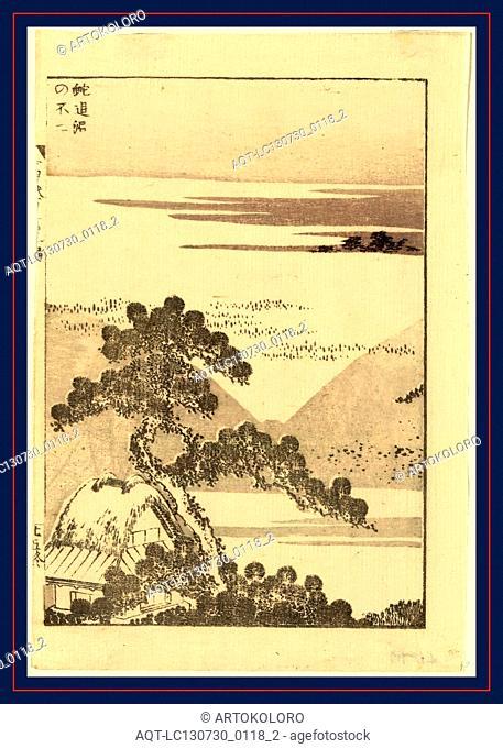 Hebi taiji no fuji, Snake chasing Mount Fuji., Katsushika, Hokusai, 1760-1849, artist, [ca. 1836], 1 print : woodcut ; 21.3 x 14.3 cm