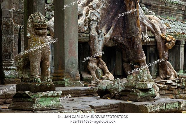 Guardian Lion  Preah Khan Temple  Angkor Siem Reap town, Siem Reap province  Cambodia, Asia