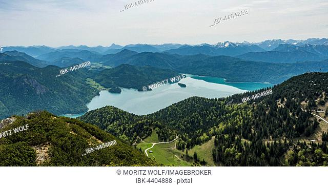 View of Lake Walchen and Alps from Herzogstand peak, Upper Bavaria, Bavaria, Germany