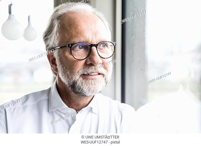 Portrait of mature businessman looking out of window