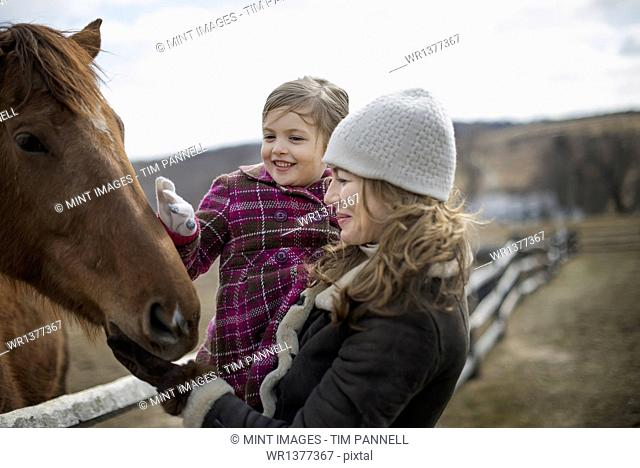 A woman and child patting a horse in a paddock on a farm