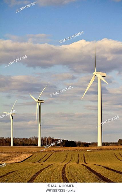 Three wind turbines in a field, Denmark, Europe
