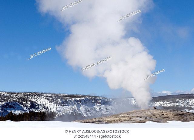USA, Yellowstone National Park, Old Faithfull in winter