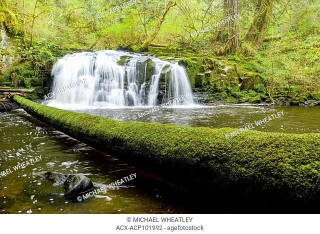 Triple Falls, Englishman River, Errington, Vancouver Island. British Columbia, Canada