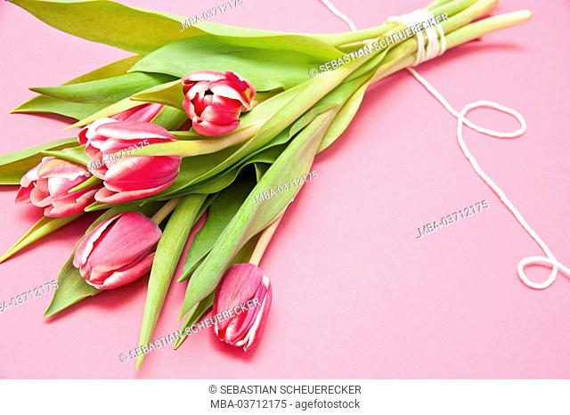 Bouquet, tulips, pink, flowers, table