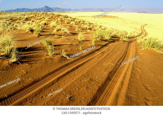 Namibia - Sandy track at the edge of the southern Namib Desert inside the NamibRand Nature Reserve