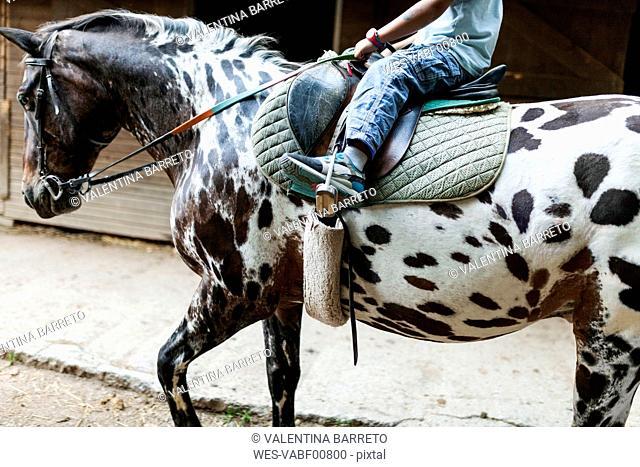 Little boy riding horse, partial view