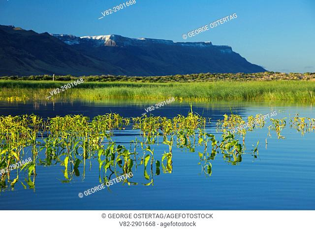 Warner Wetlands to Hart Mountain, Warner Wetlands Area of Critical Environmental Concern, Lakeview to Steens National Back Country Byway, Oregon