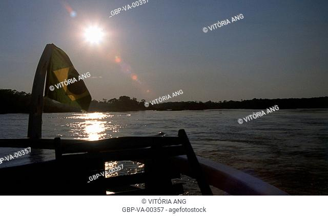 View from the boat on the river wood; Porto Velho; Rondônia; Brazil