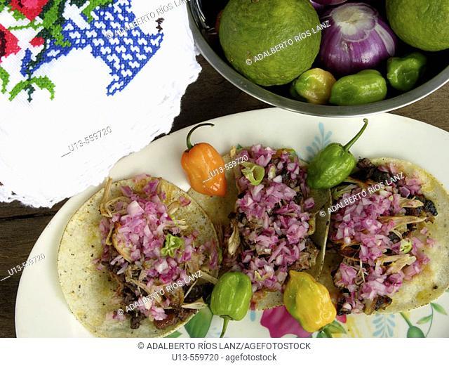 Cochinita pibil tacos. Campeche. Mexico