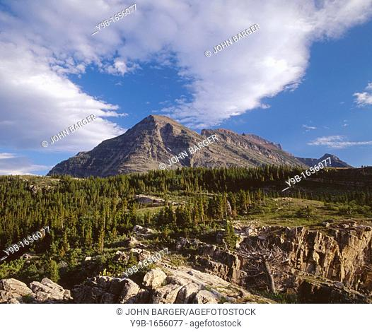 Wynn Mountain with clouds streaming overhead and stunted conifer forest, east side, Glacier National Park, Montana, USA