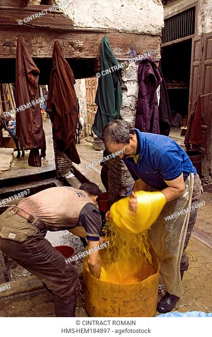 Morocco, Middle Atlas, Fes, Imperial City, Fes el Bali District, the dyers souk