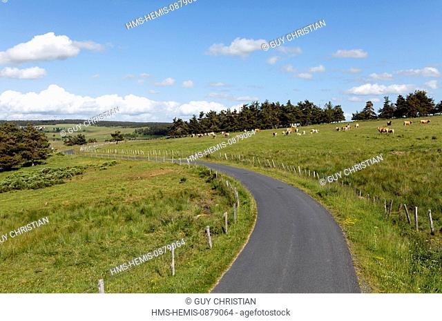 France, Lozere, country road landscape Gevaudan between Grandrieu and Chateauneuf de Randon
