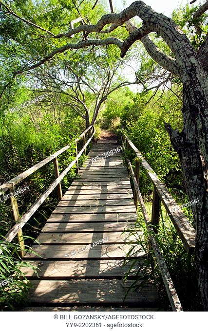 Wooden Bridge at Camp Lula Sams - Brownsville, Texas USA