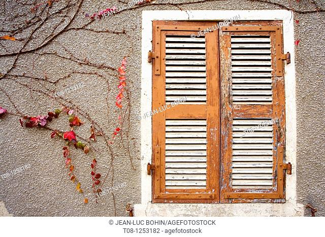 France, Burgundy, givry: shutters and ivy