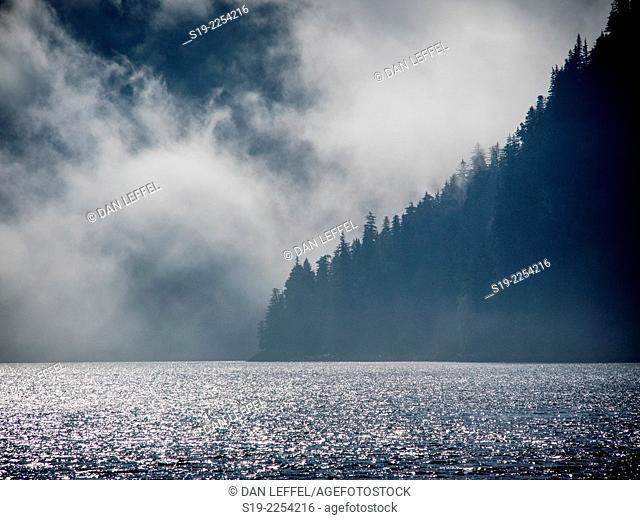 Foggy Sea Morning