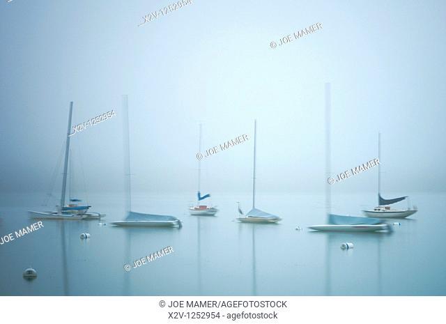 Sailboats on fog shrouded Lake Harriet at dawn