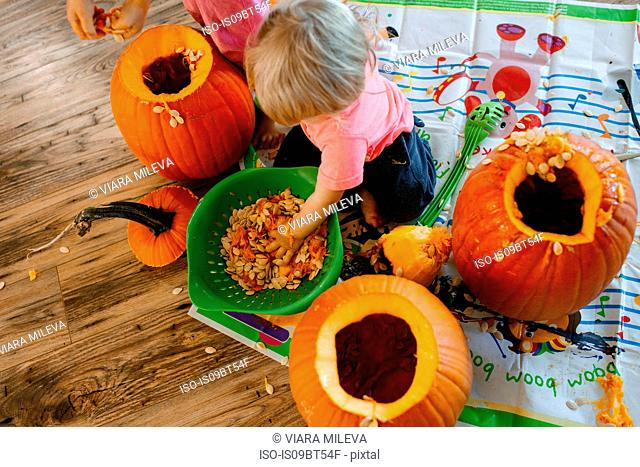 Baby boy playing with pumpkin seeds in colander