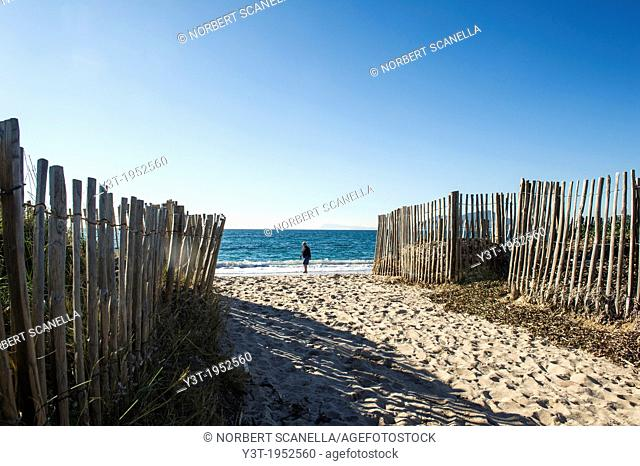 Europe, France, Var, Giens Peninsula. Almanarre Beach