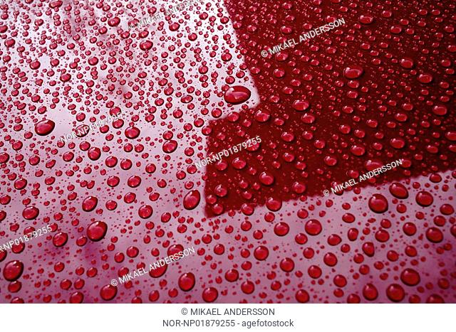 Waterdrops on a red car
