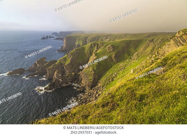 Mull of Oa, Islay, Scotland, in evening time with nice warm light, fog is comming in over the cliffs, gren grass on the ground, Islay, Scotland