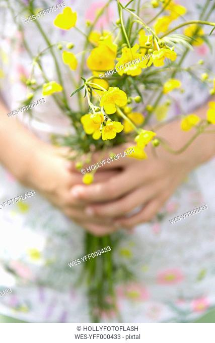 Little girl's hands holding bunch of buttercups