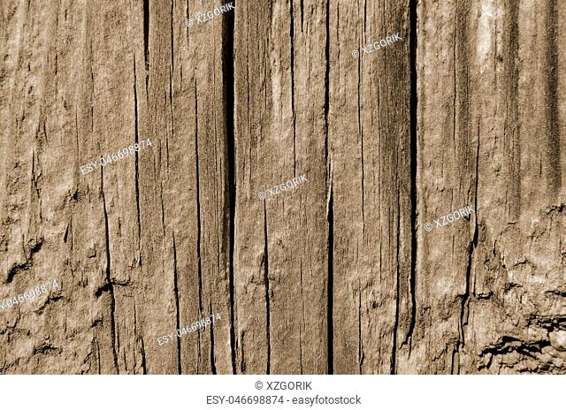 Wood cracked texture, vertical lines