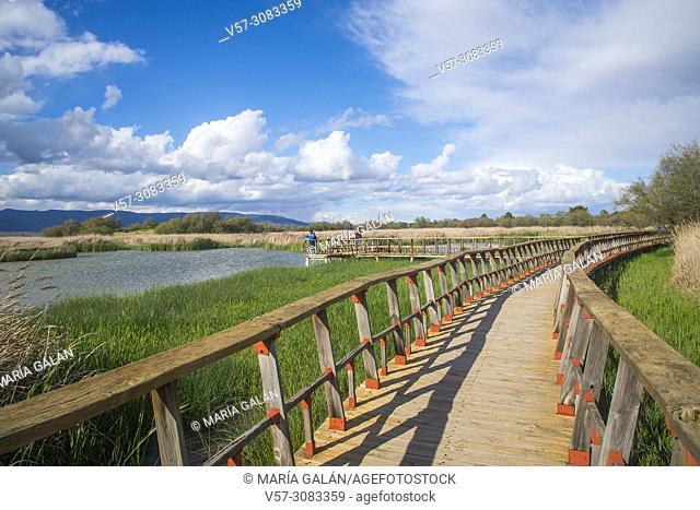 Tablas de daimiel National Park, Ciudad Real province, Castilla La Mancha, Spain