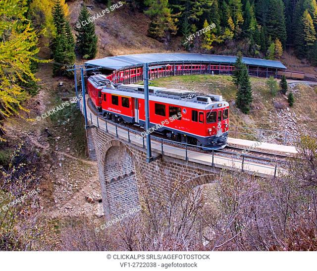The Bernina Express passing on the bridge in Privilasco, Val Poschiavo, Switzerland Europe