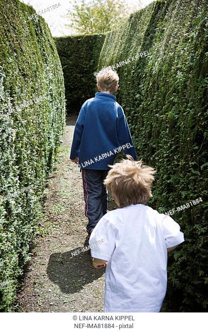 Children playing in a maze, Ireland