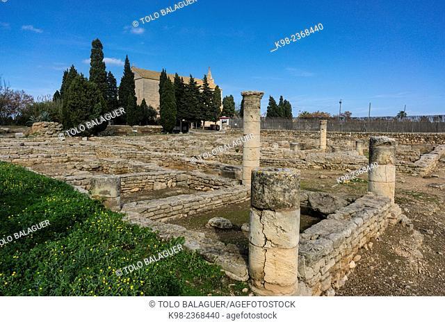 Roman city of Pollentia, Republican era, 123 BC, founded by Quintus Caecilius Metellus, Alcudia, Mallorca, Balearic Islands, Spain