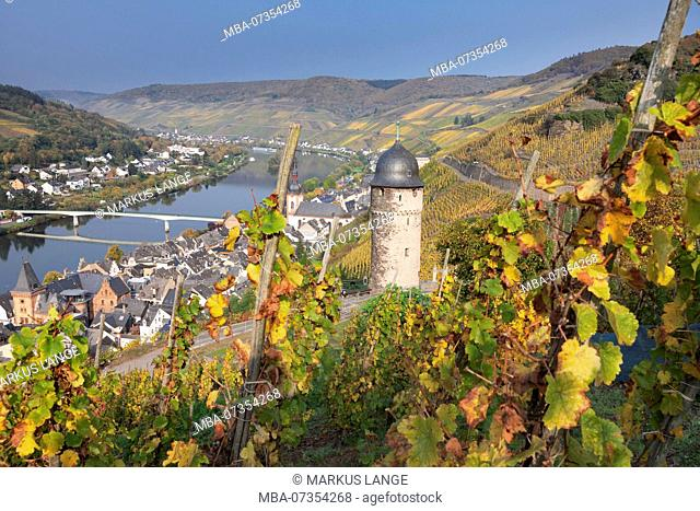 Round tower, Zell an der Mosel in autumn, Rhineland-Palatinate, Germany