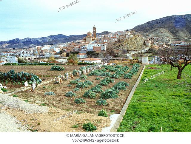 Market gardens and overview of the village. Oliete, Teruel province, Aragon, Spain