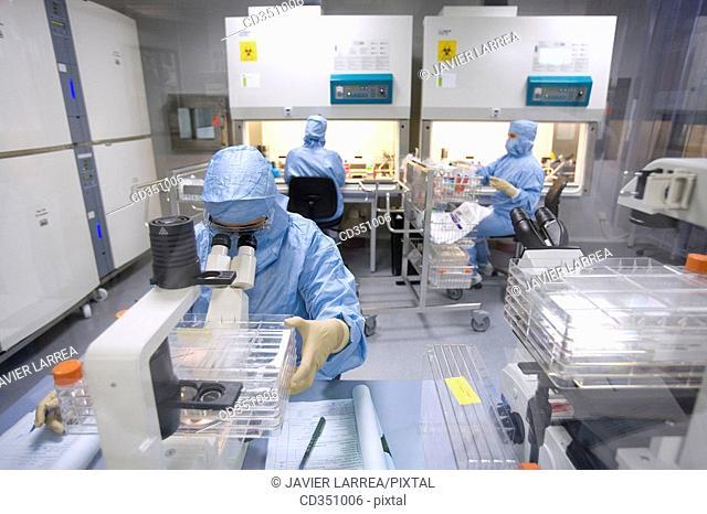 Clean room, looking through the microscope and preparing DMEM (DulbecoÂ's Modified EagleÂ's Medium), biopharmaceutical lab