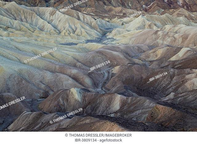 The eroded badlands of Gower Gulch at dawn, Death Valley National Park, California, USA