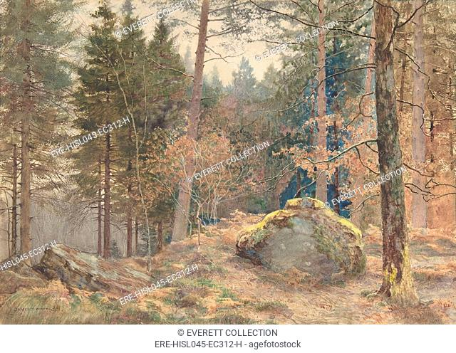 IN A WELSH PINE WOOD, by James Thomas Watts, 1891, British watercolor painting. Watts was influenced by Ruskin and the Pre-Raphaelites