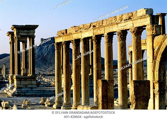The Great columnade and the arabic castle at back. Ruins of the ancient roman city in the Palmyra oasis. Syria