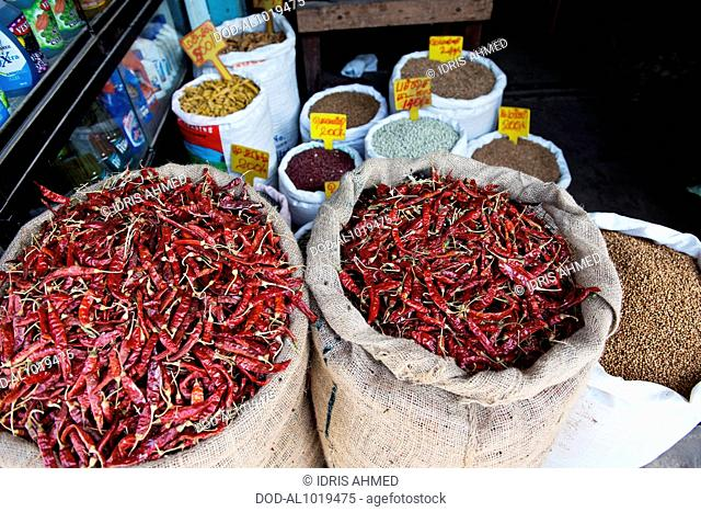Chillies and spices, Jaffna Town, Sri Lanka