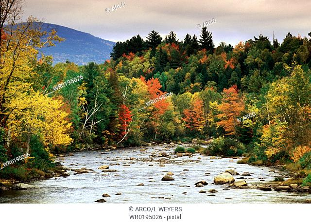 River, in, autumn, Vermont, USA