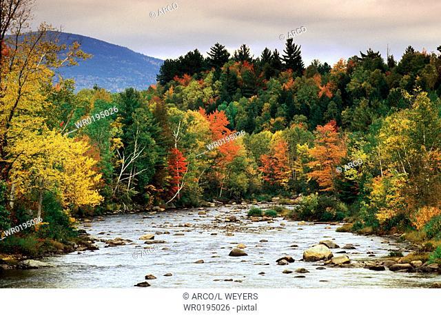 River, in, autumn, Vermont, USA