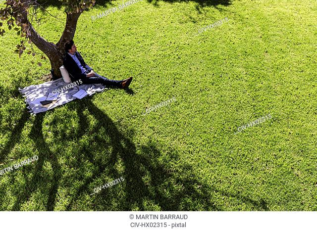 Serene businessman relaxing on blanket below tree in sunny park