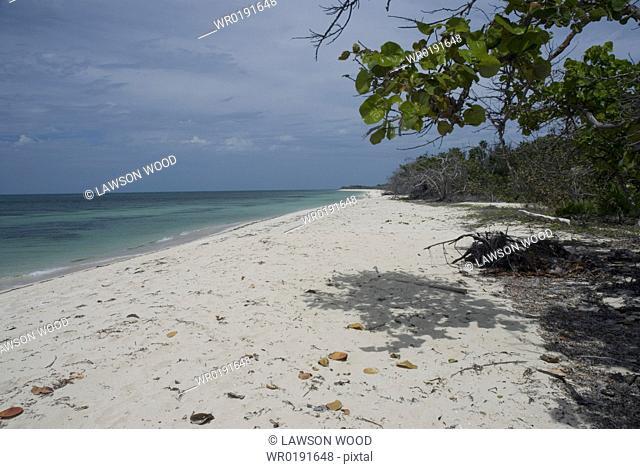 Beach scene at Maria La Gorda, Cuba, Caribbean