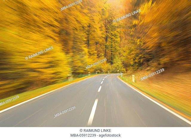 Road View from a Car Drive in Autumn Forest, Spessart, Franconia, Bavaria, Germany