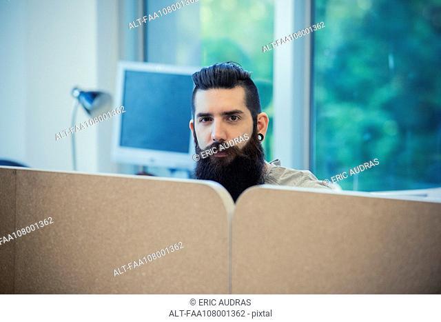 Bearded man in office, portrait