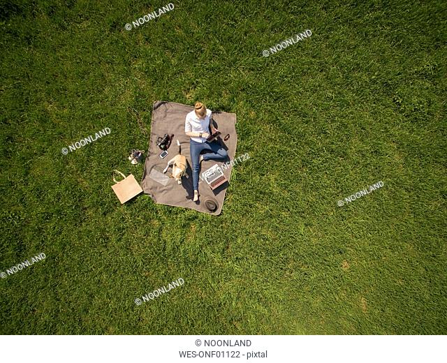 Bird's eye view of woman sitting on blanket on meadow with dog using tablet