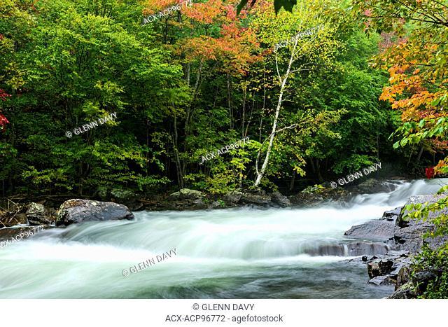 Kawagama River in autumn, nr Dorset, Ontario, Canada