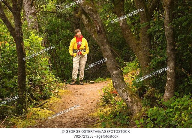 Sutton Creek Trail, Siuslaw National Forest, Oregon, USA