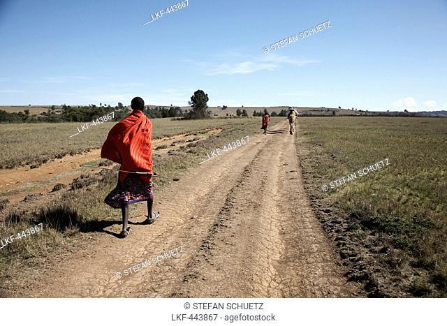 Samburu warrior with a camel, Maralal, Samburu County, Kenya