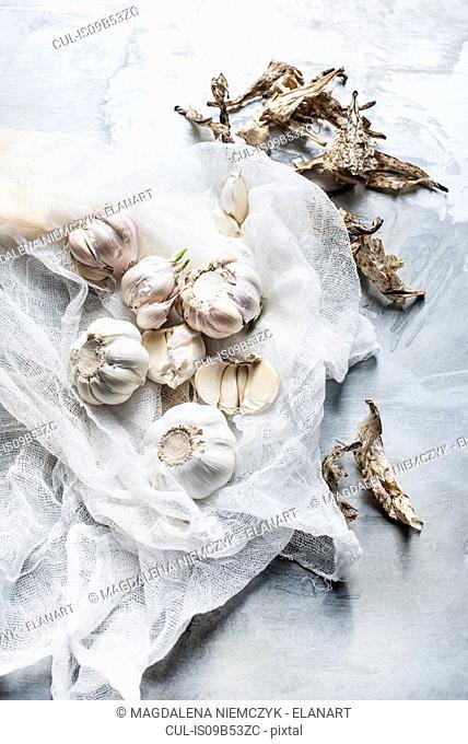 Studio shot, overhead view of garlic bulbs on muslin