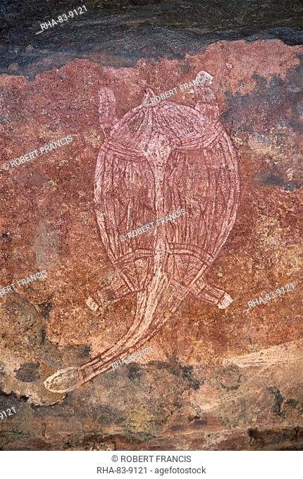 Painting of turtle at the aboriginal rock art site at Obirr Rock in Kakadu National Park where the paintings date from 20000 years old to modern